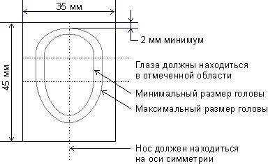 Arti Studio - Сергей Лоза